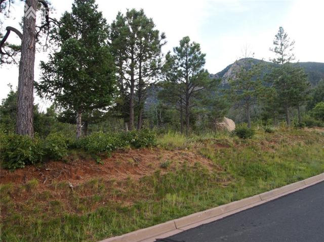 945 Grey Mountain Point, Colorado Springs, CO 80906 (#3772647) :: RE/MAX Advantage