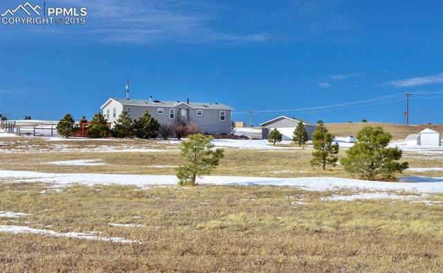 12850 Northcliff Road, Elbert, CO 80106 (#3773330) :: Jason Daniels & Associates at RE/MAX Millennium