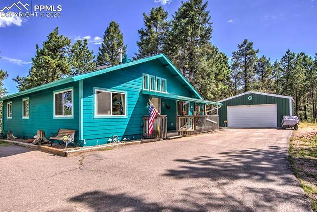 290 S Mountain Estates Road, Florissant, CO 80816 (#3774236) :: Fisk Team, RE/MAX Properties, Inc.