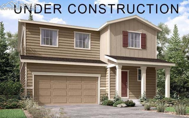 3500 Goldfield Way, Castle Rock, CO 80109 (#3774726) :: Harling Real Estate
