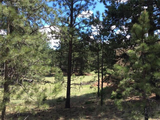 81 Rhyolite Lane, Florissant, CO 80816 (#3776164) :: 8z Real Estate