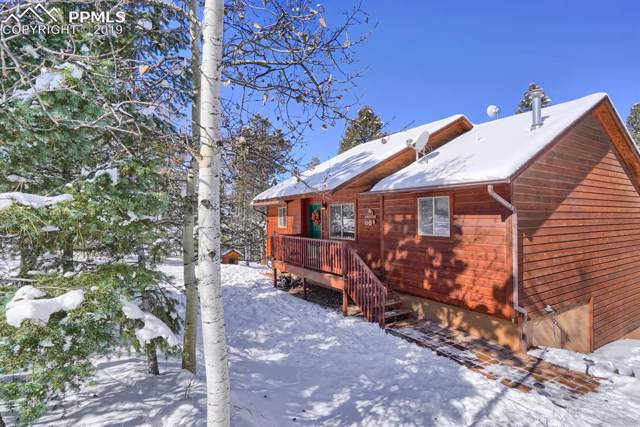 1053 Spring Creek Drive, Divide, CO 80814 (#3777069) :: CC Signature Group