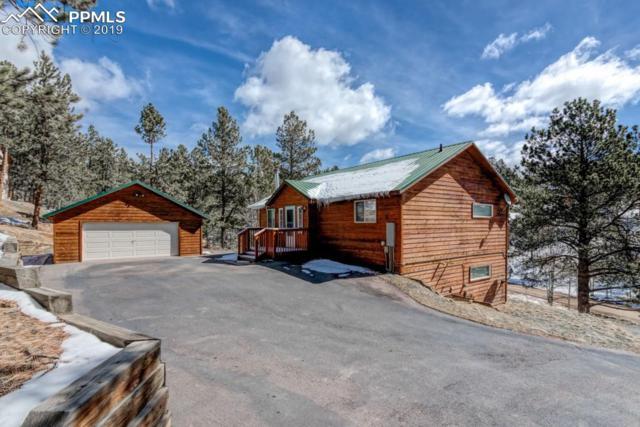 904 Blue Mesa Drive, Divide, CO 80814 (#3777953) :: CC Signature Group
