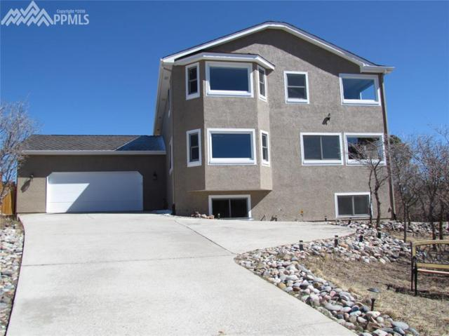 14539 River Oaks Drive, Colorado Springs, CO 80921 (#3778489) :: The Treasure Davis Team