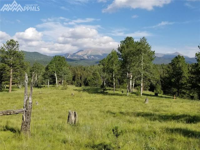 9615 W Highway 24 Highway, Divide, CO 80814 (#3779800) :: Jason Daniels & Associates at RE/MAX Millennium
