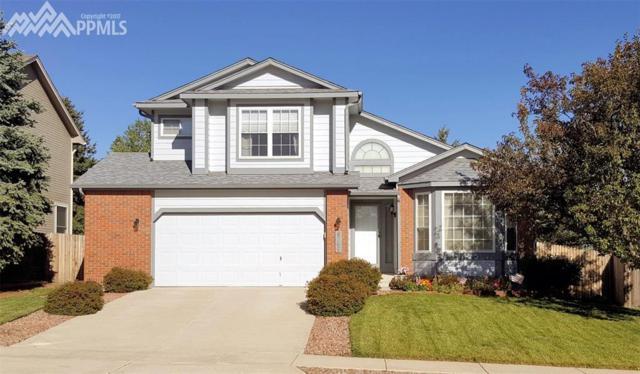 8765 Quail Glen Drive, Colorado Springs, CO 80920 (#3781364) :: 8z Real Estate
