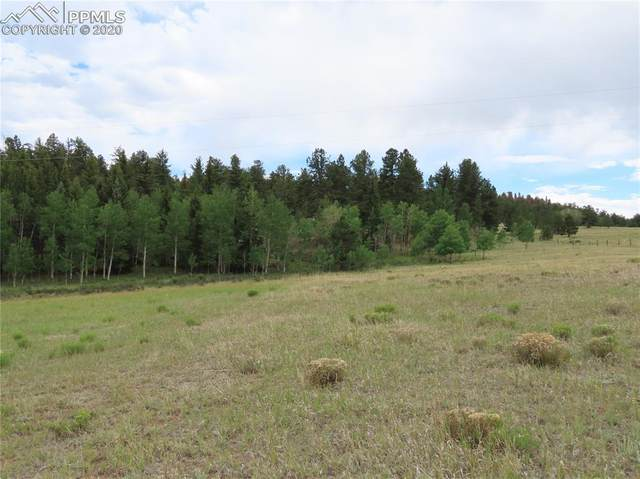 274 Lariat Drive, Florissant, CO 80816 (#3781860) :: The Harling Team @ Homesmart Realty Group