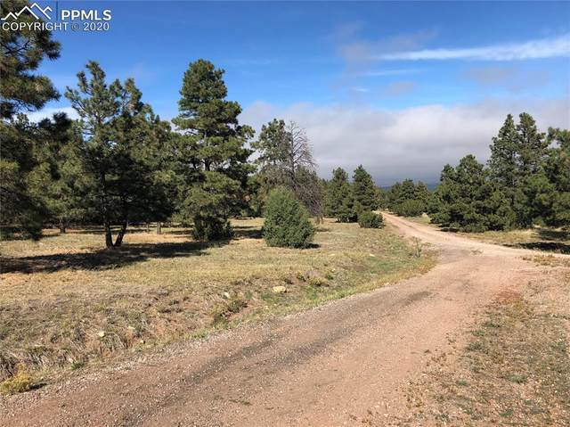 0 Ponderosa Pine Drive, Beulah, CO 81023 (#3784796) :: Action Team Realty