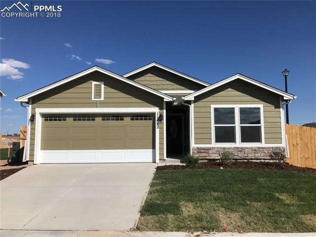 11442 Moonrock Heights, Peyton, CO 80831 (#3785191) :: Action Team Realty