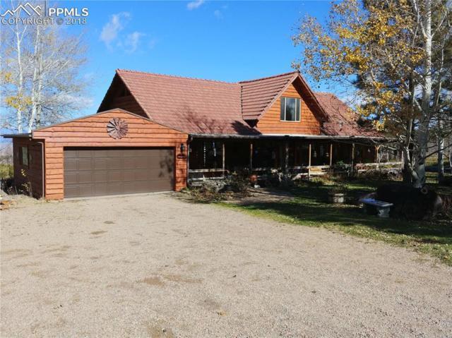 24159 Highway 96 Highway, Wetmore, CO 81253 (#3789342) :: 8z Real Estate