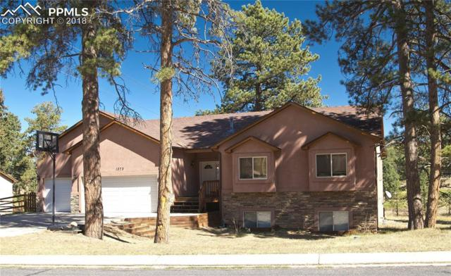 1373 Masters Drive, Woodland Park, CO 80863 (#3789749) :: Action Team Realty