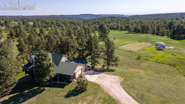 16216 Gentle Mustang View, Peyton, CO 80831 (#3796121) :: Tommy Daly Home Team