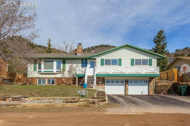 184 Upper Glenway, Palmer Lake, CO 80132 (#3800162) :: CC Signature Group