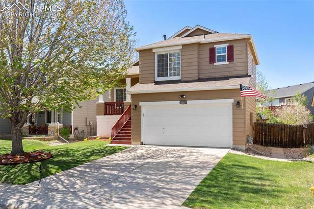 17223 Yellow Rose Way, Parker, CO 80134 (#3800471) :: 8z Real Estate