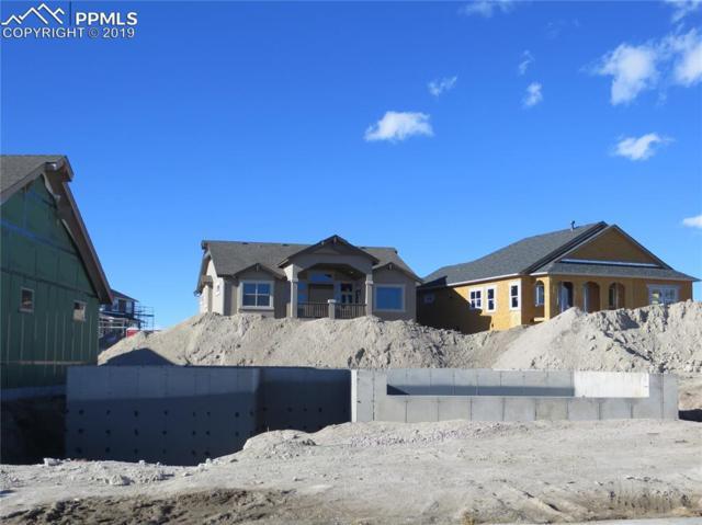 10057 Thrive Lane, Colorado Springs, CO 80924 (#3804294) :: Jason Daniels & Associates at RE/MAX Millennium