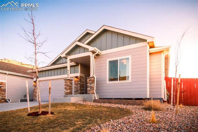 9790 Vistas Park Drive, Peyton, CO 80831 (#3804607) :: Tommy Daly Home Team
