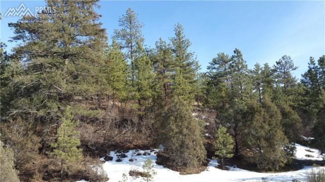 510 Maurice Drive, Cotopaxi, CO 81223 (#3805922) :: 8z Real Estate