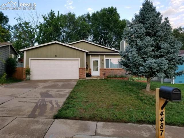 4487 Mcgrew Circle, Colorado Springs, CO 80911 (#3807831) :: The Treasure Davis Team