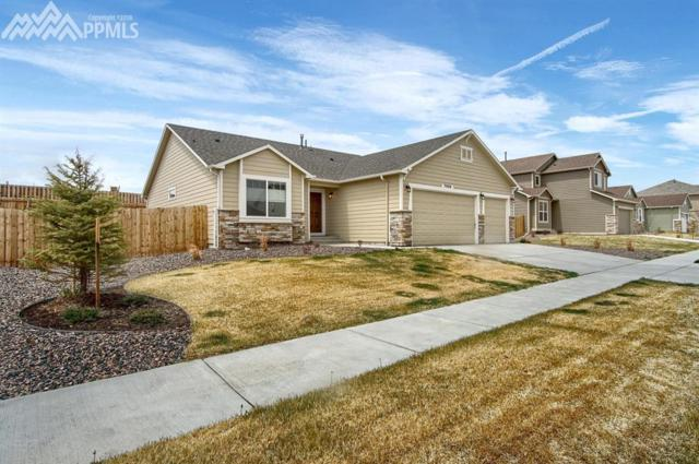 7030 Thorn Brush Way, Colorado Springs, CO 80923 (#3808663) :: 8z Real Estate