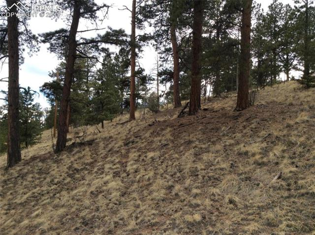822 Spring Valley Lane, Florissant, CO 80816 (#3808811) :: Tommy Daly Home Team