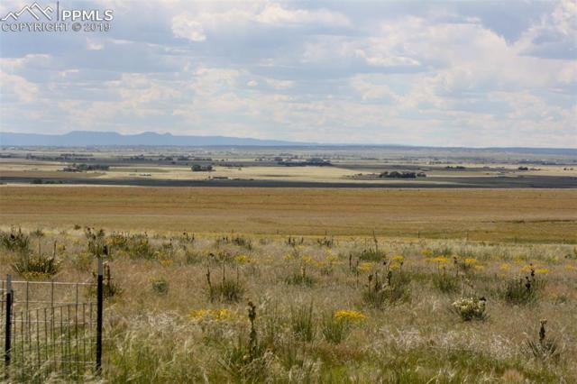 25790 Judge Orr Road, Calhan, CO 80808 (#3809033) :: 8z Real Estate