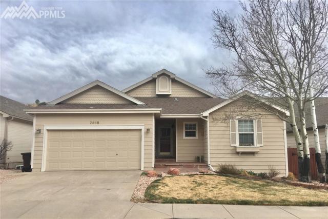 7615 Julynn Road, Colorado Springs, CO 80919 (#3810843) :: 8z Real Estate