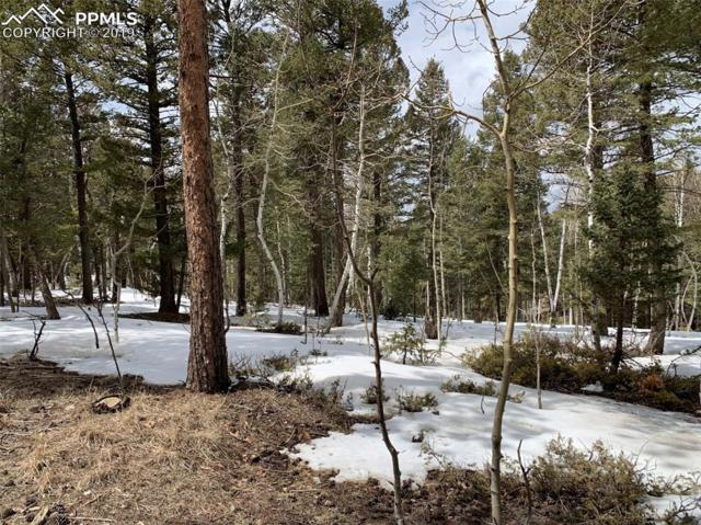 110 Blue Mesa Drive, Divide, CO 80814 (#3811769) :: Harling Real Estate