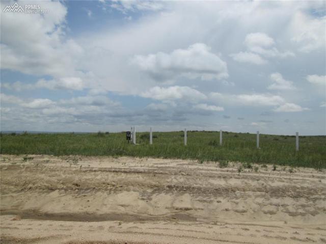 18165 Prairie Coach View, Calhan, CO 80808 (#3813329) :: 8z Real Estate