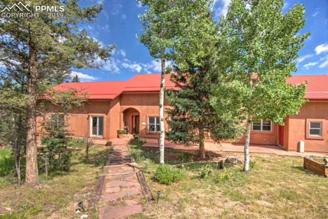 153 Moss Rock Court, Divide, CO 80814 (#3814660) :: Harling Real Estate