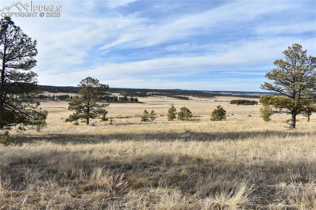 County Road 78, Calhan, CO 80808 (#3815094) :: Action Team Realty
