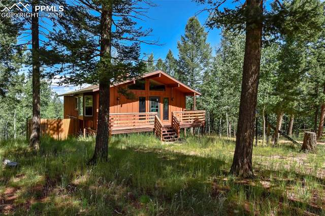1307 County 512 Road, Divide, CO 80814 (#3818946) :: The Peak Properties Group