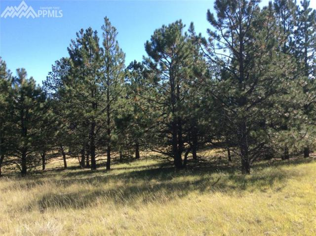 693 Black Mesa Circle, Florissant, CO 80816 (#3819611) :: The Treasure Davis Team