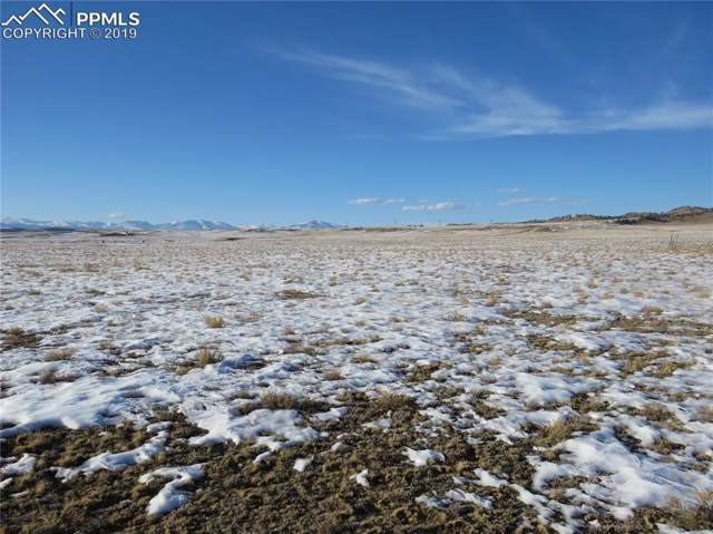 1189 Hinsdale Road, Hartsel, CO 80449 (#3821067) :: 8z Real Estate