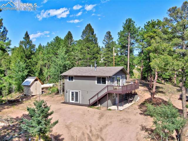 112 Needle Creek Road, Divide, CO 80814 (#3824434) :: The Kibler Group