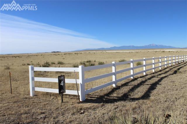 19031 Good Life View, Calhan, CO 80808 (#3825579) :: Action Team Realty