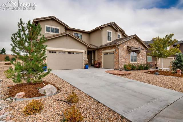 295 Andromeda Lane, Castle Rock, CO 80108 (#3835853) :: Tommy Daly Home Team