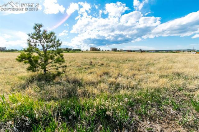 13710 Irish Hunter Trail, Elbert, CO 80106 (#3836394) :: Action Team Realty