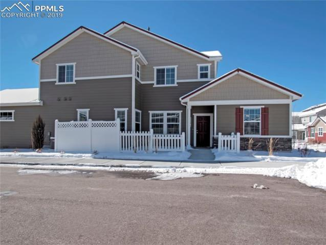 8896 Emma Jean Point, Colorado Springs, CO 80924 (#3839569) :: Fisk Team, RE/MAX Properties, Inc.