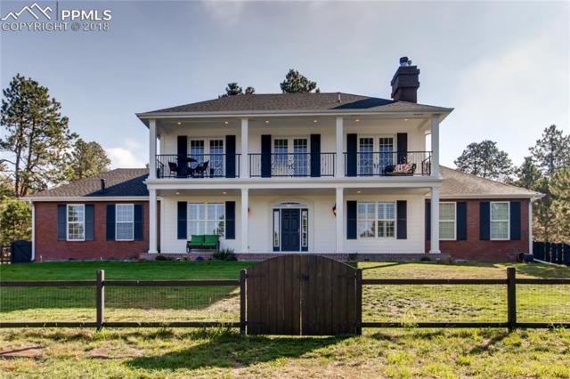 8215 Bar X Terrace, Colorado Springs, CO 80908 (#3842693) :: Jason Daniels & Associates at RE/MAX Millennium