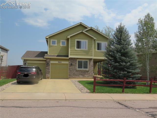 985 Winebrook Way, Fountain, CO 80817 (#3843153) :: Harling Real Estate