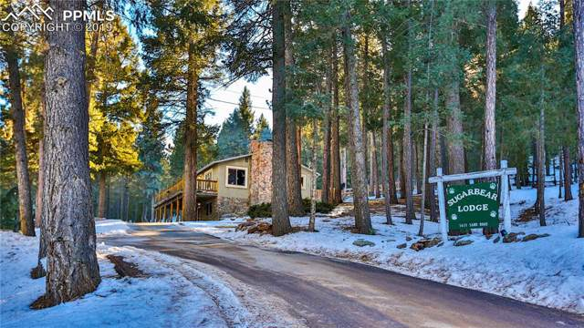 1631 Sand Road, Woodland Park, CO 80863 (#3843196) :: The Kibler Group