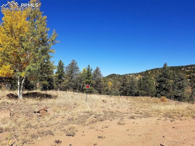 573 Stratton Circle, Cripple Creek, CO 80813 (#3844830) :: Compass Colorado Realty