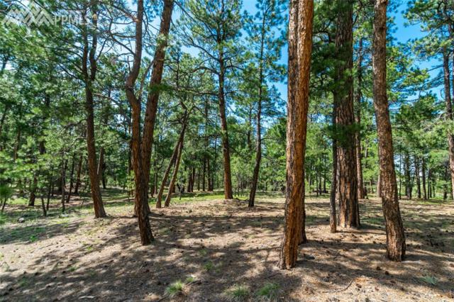 19085 Hilltop Pines Path, Monument, CO 80132 (#3845453) :: The Dixon Group