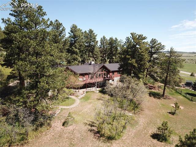 4057 Red Rock Drive, Larkspur, CO 80118 (#3846320) :: The Daniels Team