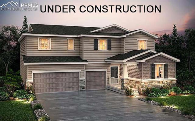 12762 Trejo Circle, Parker, CO 80134 (#3854270) :: 8z Real Estate