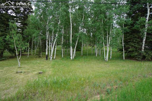 571 Will Scarlet Drive, Divide, CO 80814 (#3854290) :: Fisk Team, RE/MAX Properties, Inc.