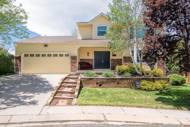 6540 Denim Drive, Colorado Springs, CO 80918 (#3855093) :: 8z Real Estate