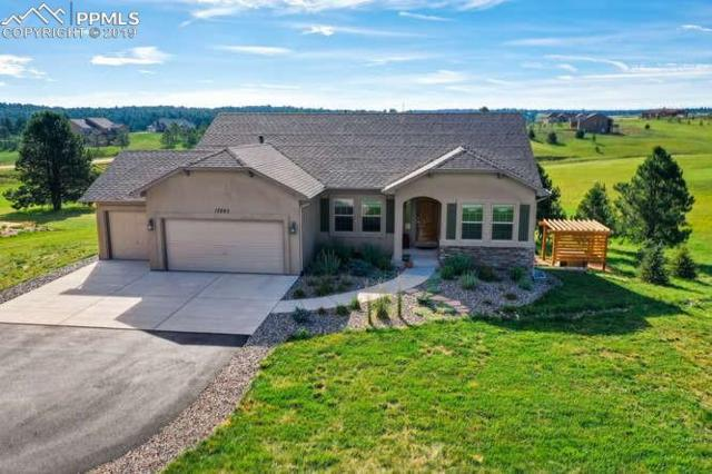 17283 Carriage Horse Drive, Colorado Springs, CO 80921 (#3855370) :: Action Team Realty