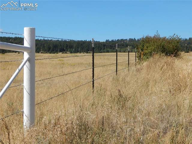 04 County Road 102, Elbert, CO 80106 (#3855588) :: CC Signature Group