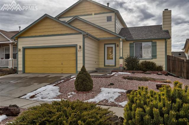 4821 Hawk Meadow Drive, Colorado Springs, CO 80916 (#3856499) :: The Peak Properties Group
